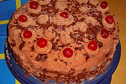 Mousse au Chocolat - Torte 24
