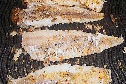 Fisch mit Zucchini - Tomatensauce 4