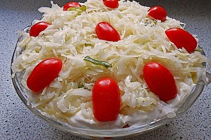 Daphnes schlanker Gyros - Schichtsalat 15