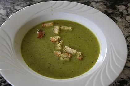 Bärlauch - Sahnesuppe mit Croutons 19
