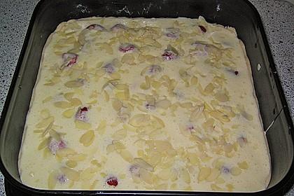 Rhabarber - Erdbeer - Blechkuchen 2