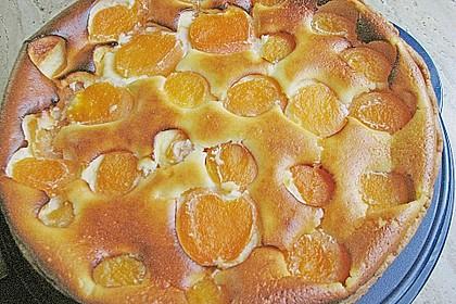 Aprikosen - Käsekuchen 1