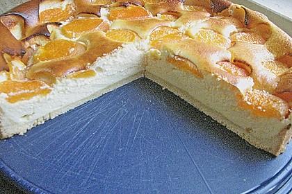 Aprikosen - Käsekuchen 2