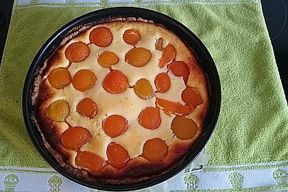 Aprikosen - Käsekuchen