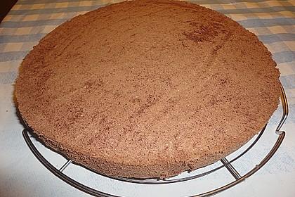 Schokoladenbiskuit 9