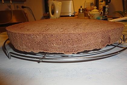 Schokoladenbiskuit 8