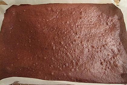 Schokoladenbiskuit 14
