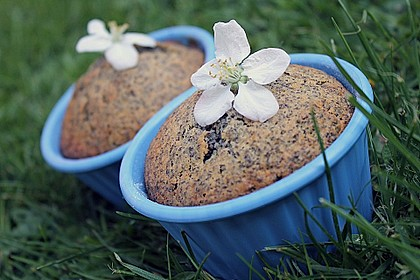 Rhabarber - Mohn - Muffins 1