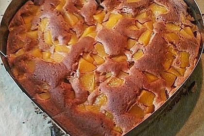Schokoladen - Obstkuchen