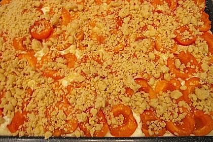 Aprikosen - Streusel - Küchlein von Sarah
