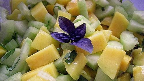 mango gurken salat rezept mit bild von nemetona. Black Bedroom Furniture Sets. Home Design Ideas