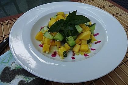 Mango - Gurken - Salat 1