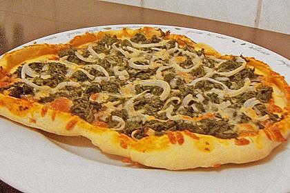 Original Pizzateig 102