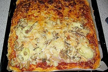 Original Pizzateig 49