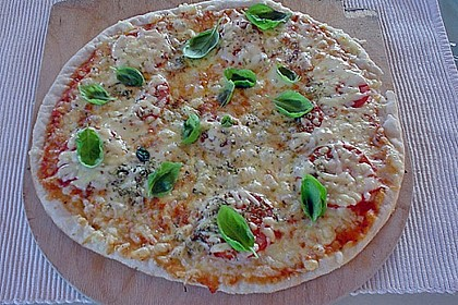 Original Pizzateig 28