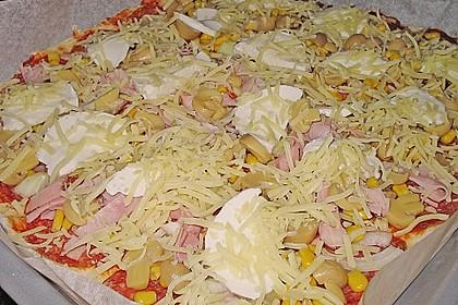 Original Pizzateig 51