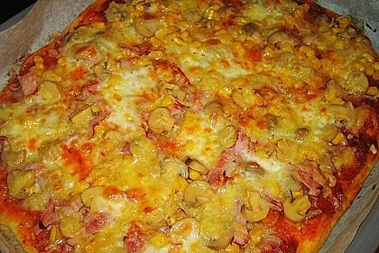 Original Pizzateig 45