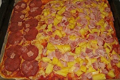 Original Pizzateig 42