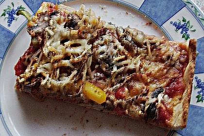 Original Pizzateig 104