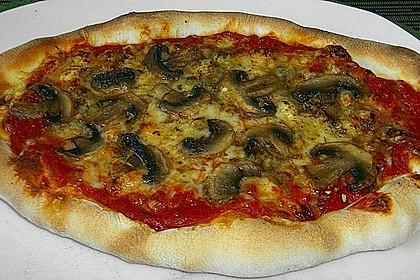 Original Pizzateig 30