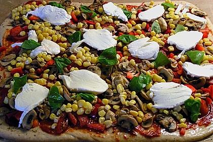 Pizzateig 45
