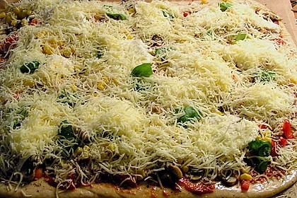 Original Pizzateig 82