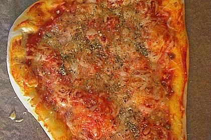 Original Pizzateig 52