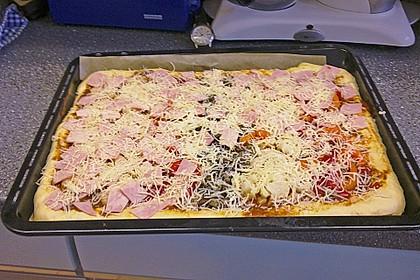 Pizzateig 29