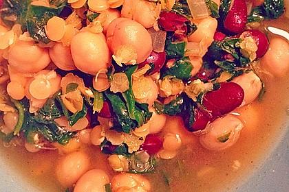 Arabische Kichererbsen-Spinat Suppe 15