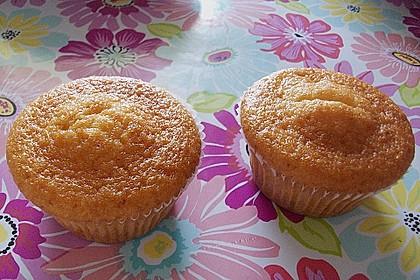 Muffins 117