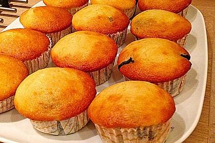 Muffins 131