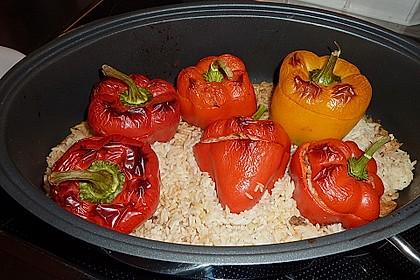 Gefüllte Paprika mit Hackfleisch und Reis 1