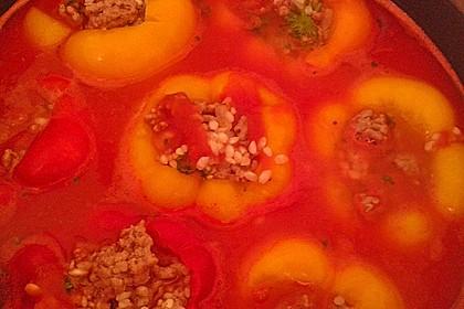 Gefüllte Paprika mit Hackfleisch und Reis 7