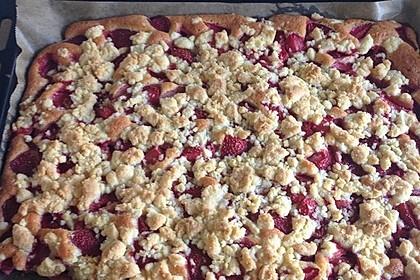 Erdbeer - Streuselkuchen 3