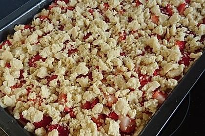 Erdbeer - Streuselkuchen 10