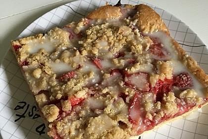 Erdbeer - Streuselkuchen 18
