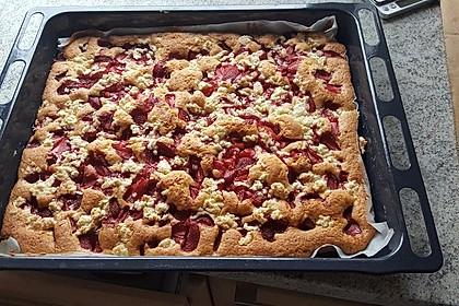 Erdbeer - Streuselkuchen 23