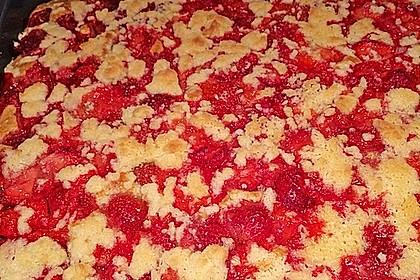 Erdbeer - Streuselkuchen 4