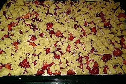 Erdbeer - Streuselkuchen 15