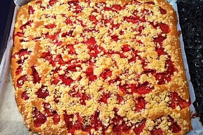 Erdbeer - Streuselkuchen 20