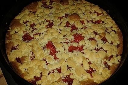 Erdbeer - Streuselkuchen 6