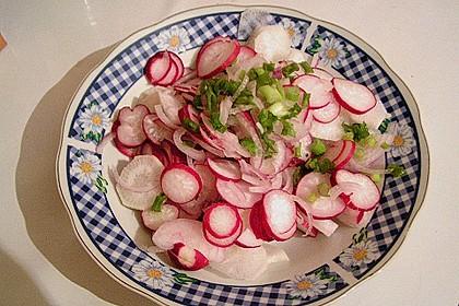 Rettich - Radieschen - Salat 2