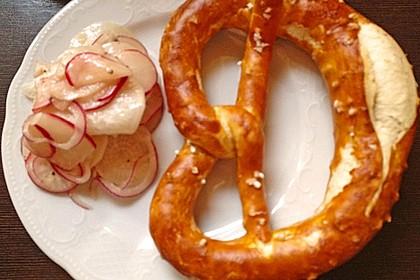 Rettich - Radieschen - Salat 6