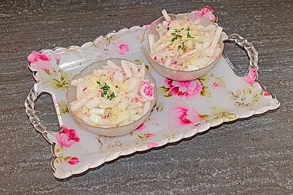Rettich - Radieschen - Salat 4