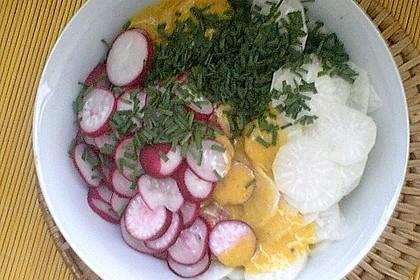 Rettich - Radieschen - Salat 5