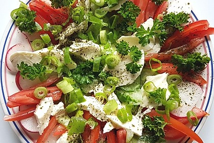 Tomaten - Mozarella - Gurken - Salat 1
