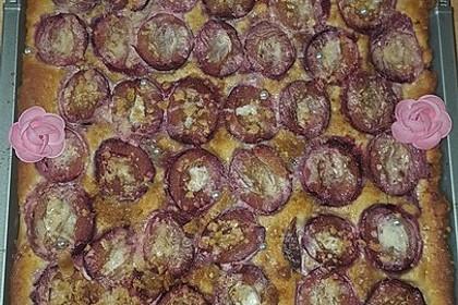Illes schneller Pflaumenkuchen vom Blech 14