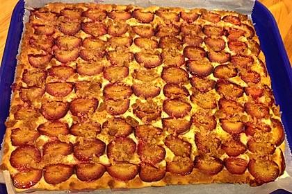 Illes schneller Pflaumenkuchen vom Blech 6