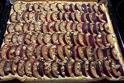 Illes schneller Pflaumenkuchen vom Blech 19