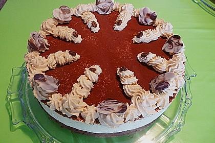 Manus leichte Tiramisu -Torte 10